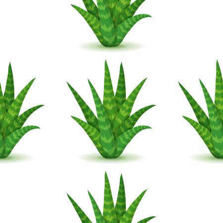 plantas del desierto: Aloe vera - sin patrón, con las plantas del desierto. La naturaleza de fondo floral con hojas suculentas verde. Papel pintado con la plantación de aloe. ilustración vectorial