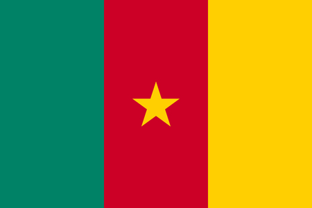 Cameroon flag vector illustration Ilustrace