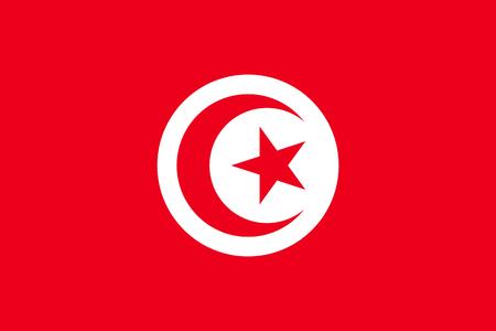 Tunisia flag flat