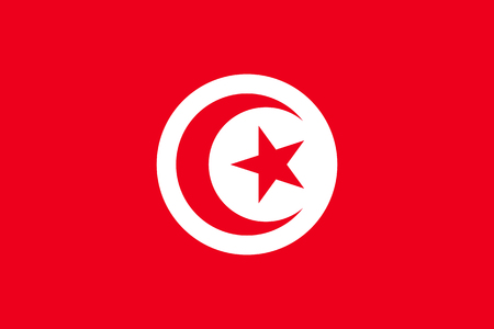 Tunisia flag flat
