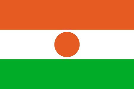 Niger national flat style flag