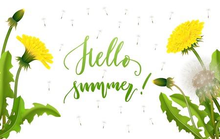 Banner hello summer dandelion seed background lettering