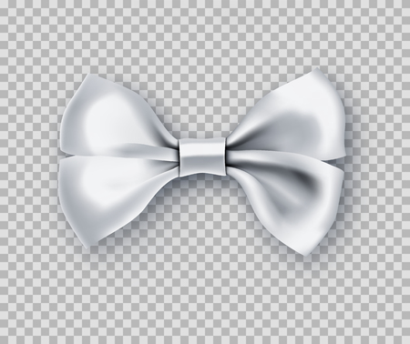 Sparkling white bow tie from satin material