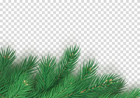 Winter background with realistic branches of christmas tree. Merry Christmas greeting card template with empty space. Green fir tree branches isolated on transparent background vector illustration. Illusztráció
