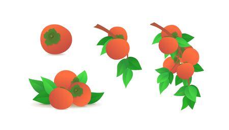 Ripe orange persimmons icons set