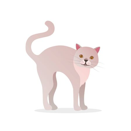 Funny white cat icon in cartoon style.