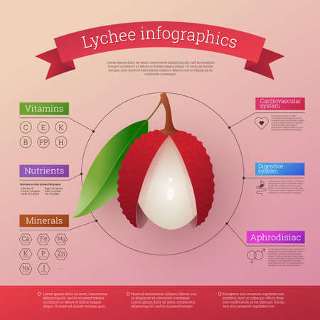 Lychee fruit infographics calories, vitamins and minerals. Healthy facts value nutritional information. Fresh ripe exotic tropical fruit benefits. Healthy diet vector illustration Vektorové ilustrace