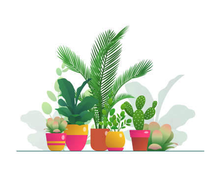 Houseplants in flowerpots set. Group of tropical potted plants for home or office organic interior decoration, urban jungles concept flat vector illustration