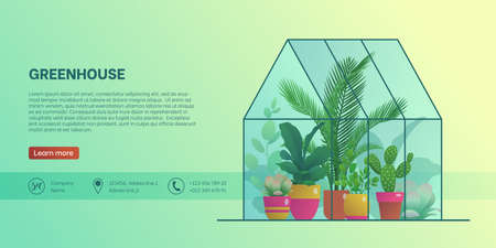 Greenhouse landing page template. Home glass orangery with various plants, organic interior design, garden work hobby or botanical interest website, homepage flat vector illustration