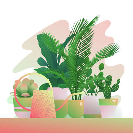 Tropical potted houseplants. Group of exotic plants and watering can for home organic interior design, hobby or botanical interest, urban jungles concept flat vector illustration Vettoriali