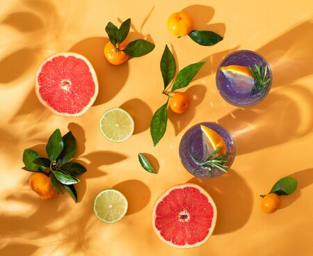 Still life with citrus and cocktails. Solar photography. The summer mood.