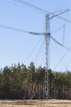 high voltage current: electricity transmission pylon silhouetted against blue sky. In the woods, at sunset.