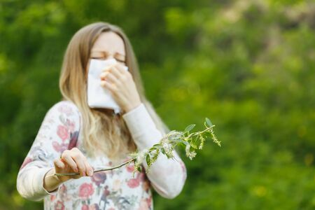 fuzz: young woman suffering spring pollen allergy. Sneezing into a white handkerchief, holding a sprig with fuzz. Stock Photo