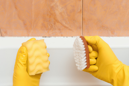 Hand in gloves I want to clean mold in the bathroom