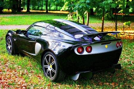 Sport car on the green grass in the park Editorial