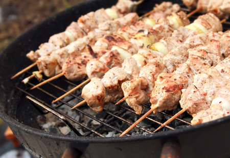 Barbecue meat sticks on mangal. Picnic on nature photo