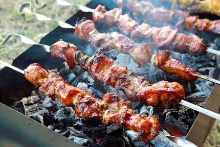 Grilled barbecue sticks cooking on coals on mangal outdoor photo