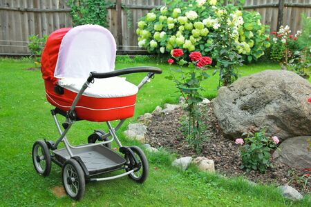 Red baby stroller on nature in park green grass background photo