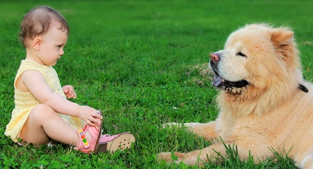 Beautiful small baby girl looking on big funny dog sitting on green grass and holding foot outdoors on summer background photo