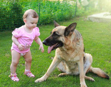 big dog: Fun baby looking on big dog on summer green background Stock Photo