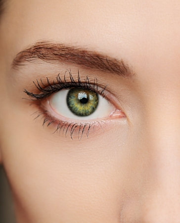 beautiful eyes: Macro green eye of beautiful woman  Closeup portrait