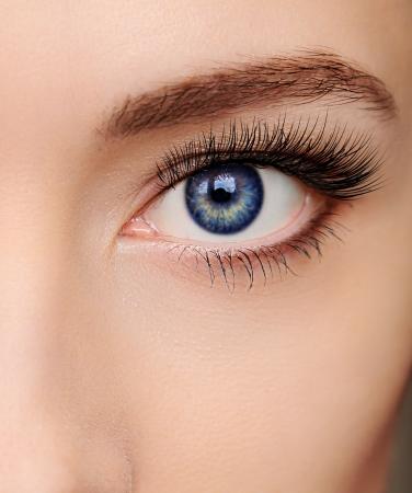 Zbliżenie piękne niebieskie oko kobiety z długimi salonie rzęsy patrząc