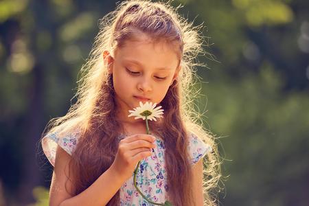 Muchacha hermosa del niño que mira la flor de la manzanilla en el fondo verde del verano de la naturaleza. Closeup retrato brillante Foto de archivo