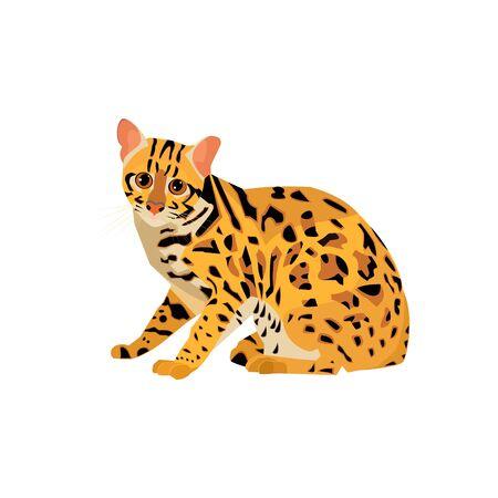 wild cat is an inhabitant animal of Thailand