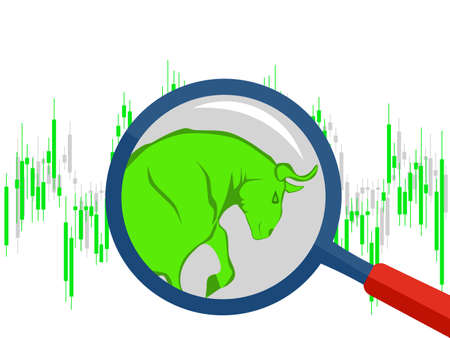 The bull market which rising price of securities are expected vector