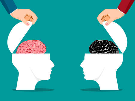 Both sides of the human head were opened with a brain. business concept