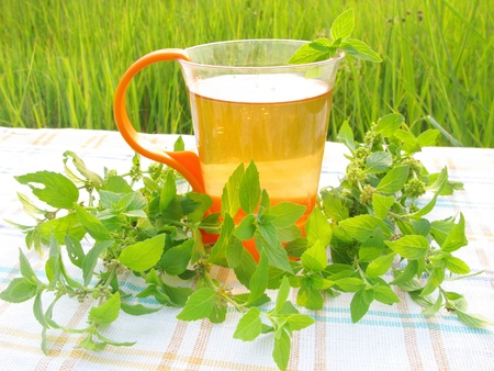 herbal tea with mint picnic outdoors photo