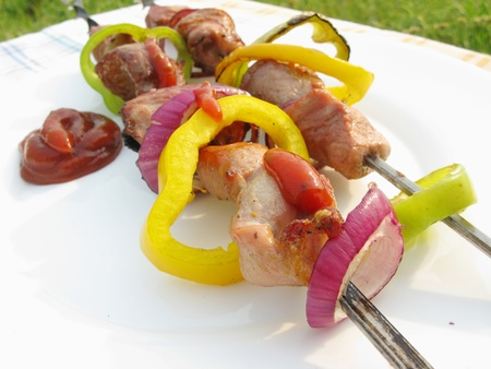 cooked meat with pepper onion roasting on plate Stock Photo - 11047411