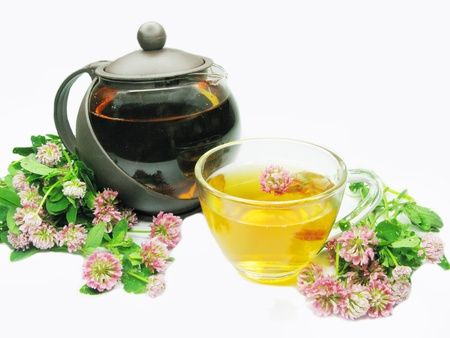herbal tea with clover extract and flowers Stock Photo - 11047695