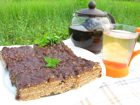 herbal tea and chocolate cake tea-drinking outdoors photo