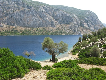 woody bay: beautiful aegean sea landscape view of water green trees and mountains Stock Photo