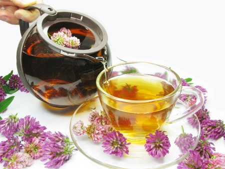 pouring floral clover tea into cup photo