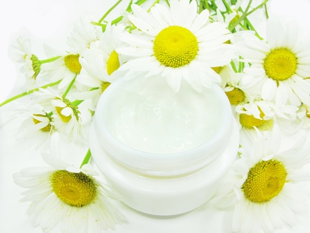 cosmetic creme for face with daisy extract health-care photo