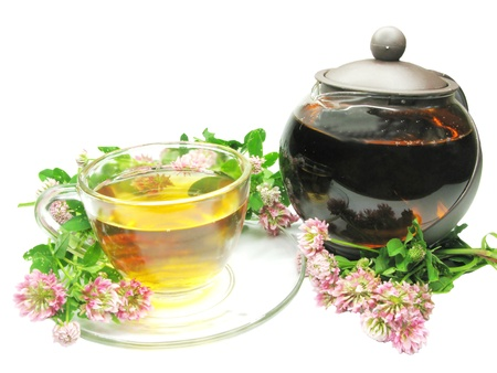 herbal tea with clover flowers photo