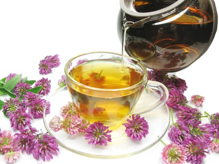 pouring herbal tea into glass cup among clover flowers photo