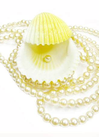 beads and pearl in sea shell photo
