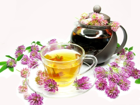 herbal floral tea with clover pink flowers photo