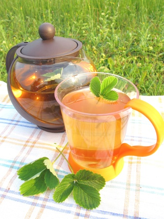 herbal tea in teapot and cup tea-drinking outdoors photo