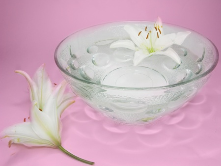 spa bowl with clean water with lily petals photo