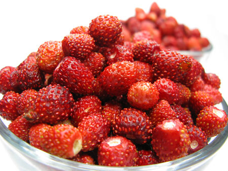 wild strawberry: wild strawberry berries fruit dessert summer forest food