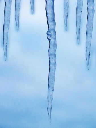 sopel lodu: icicle on snow winter background christmas card