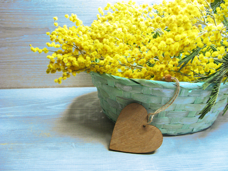 Mimosa yellow flowers bush floral spring background 8 march greeting mimosa yellow flowers bush floral spring background 8 march greeting card stock photo 97697696 mightylinksfo