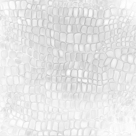 serpiente cobra: Textura de la piel de serpiente. Modelo inconsútil negro y fondo blanco. Vector