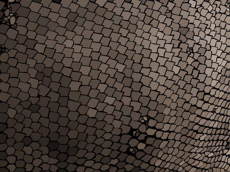 snakeskin: snake skin texture Illustration