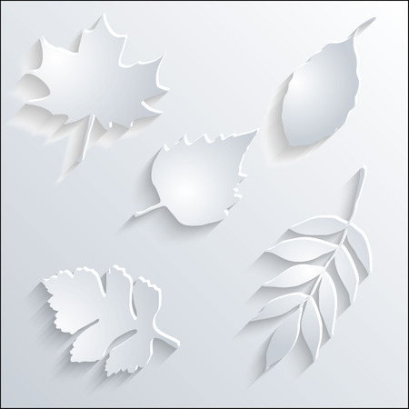 Card with paper leaves. Vector