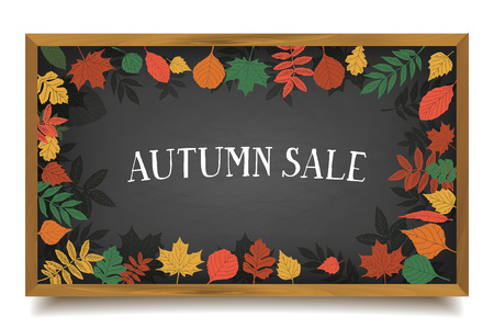 blackboard background: Autumn sale. Autumn leaves are drawn with chalk on a black chalkboard. Sketch, design elements. Vector illustration.